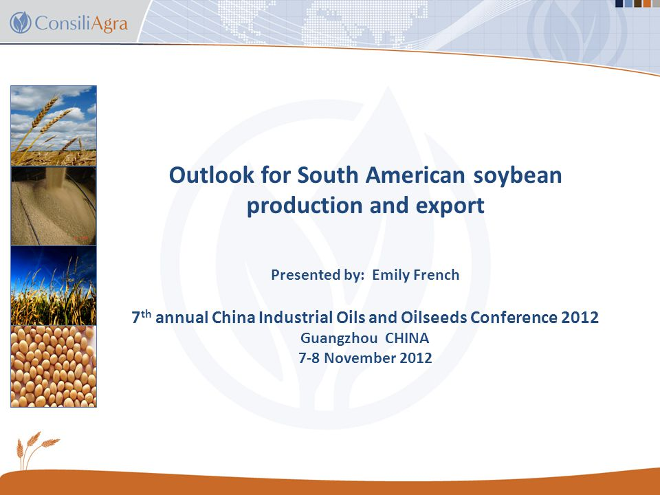 Future expansion of South America soybean plantings