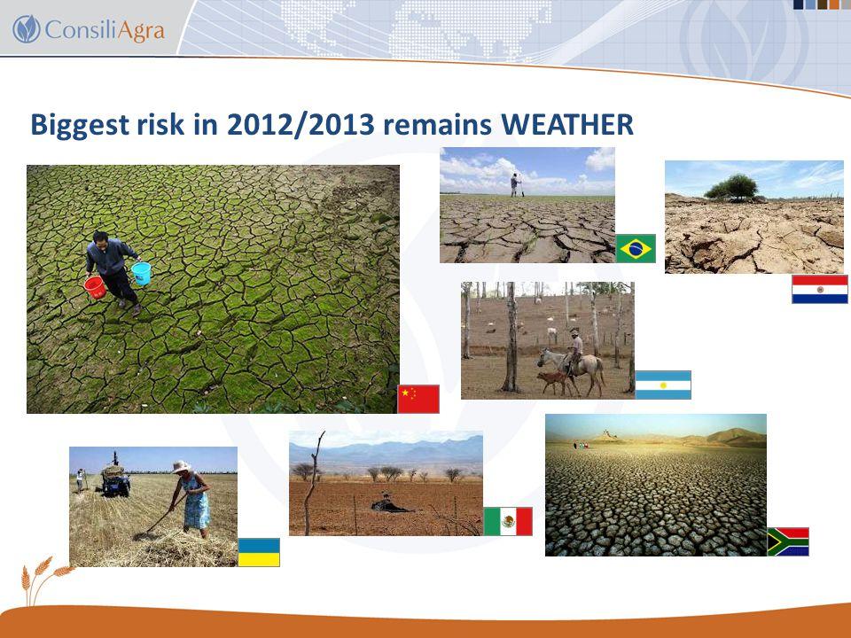 World soybean production Country / region 2011/12 estimate 2012/13 forecast Change from Sept WASDE (%) Change from 2011/12 (%) World238.1264.3+2.4+11% United States 84.277.8+8.6%-7.5% Argentina41.055.0--+21.1% Brasil66.581.0--+21.8% Paraguay4.08.1--+102.5% India11.011.5+0.9%+4.5% China13.512.6---6.7% 11 October 2012 – USDA WASDE