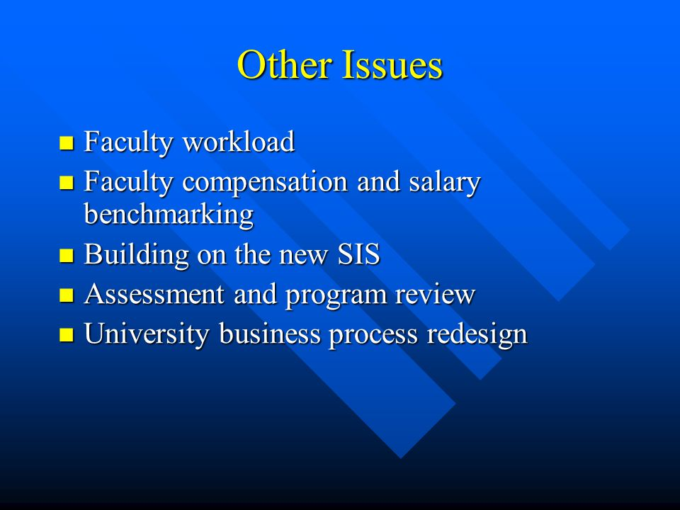 Other Issues Faculty workload Faculty workload Faculty compensation and salary benchmarking Faculty compensation and salary benchmarking Building on the new SIS Building on the new SIS Assessment and program review Assessment and program review University business process redesign University business process redesign