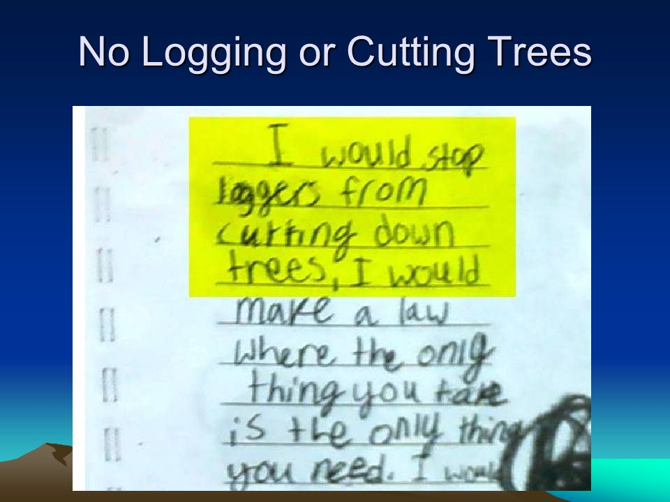 No Logging or Cutting Trees