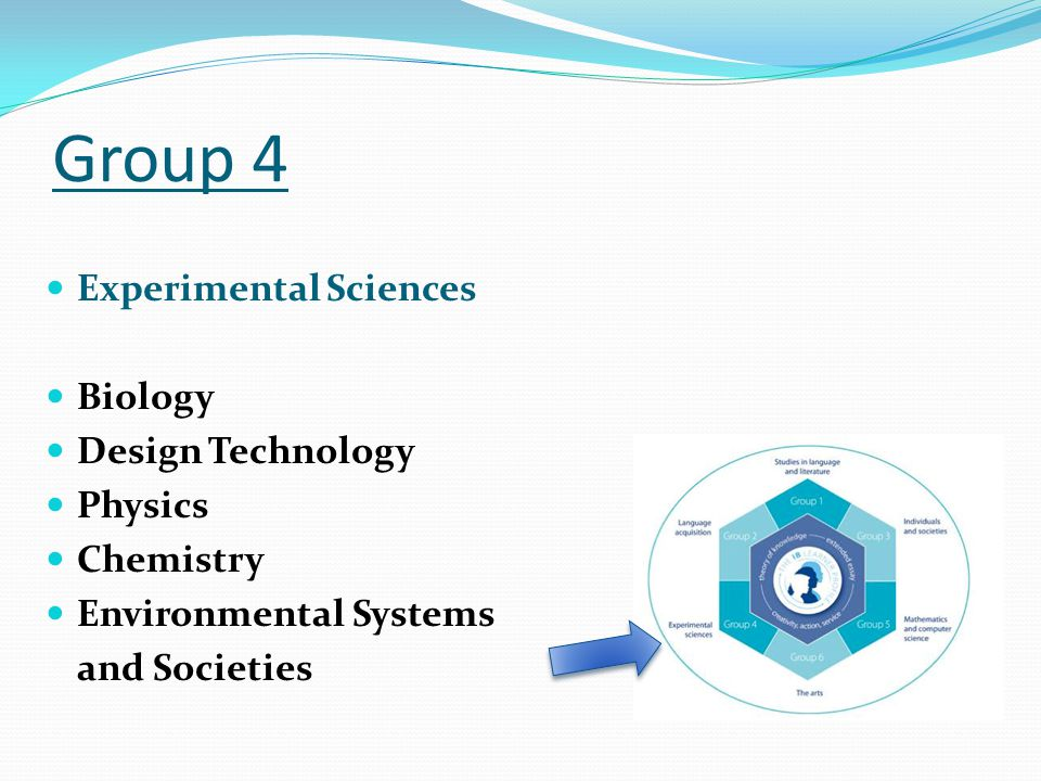 Group 4 Experimental Sciences Biology Design Technology Physics Chemistry Environmental Systems and Societies