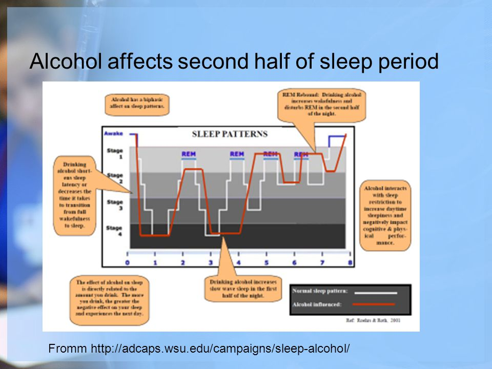 Alcohol affects second half of sleep period Fromm http://adcaps.wsu.edu/campaigns/sleep-alcohol/