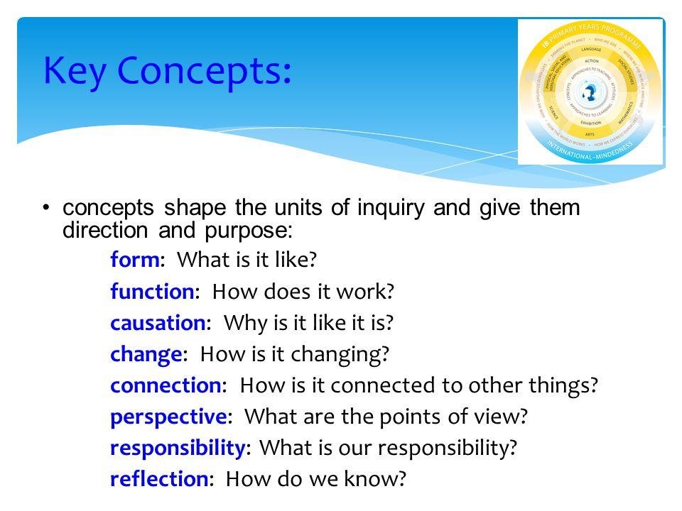 concepts shape the units of inquiry and give them direction and purpose: form: What is it like.