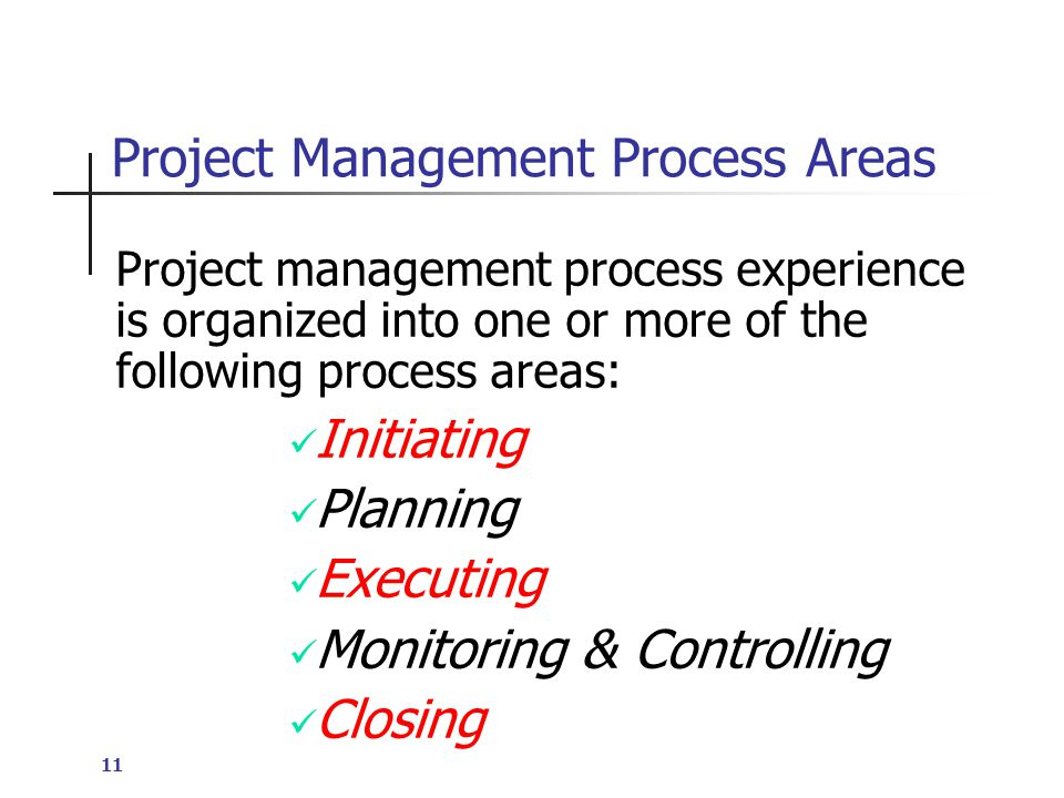 11 Project Management Process Areas Project management process experience is organized into one or more of the following process areas: Initiating Planning Executing Monitoring & Controlling Closing