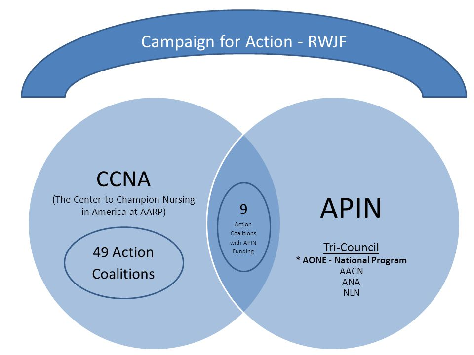 APIN Tri-Council * AONE - National Program AACN ANA NLN 49 Action Coalitions 9 Action Coalitions with APIN Funding Campaign for Action - RWJF CCNA (Th