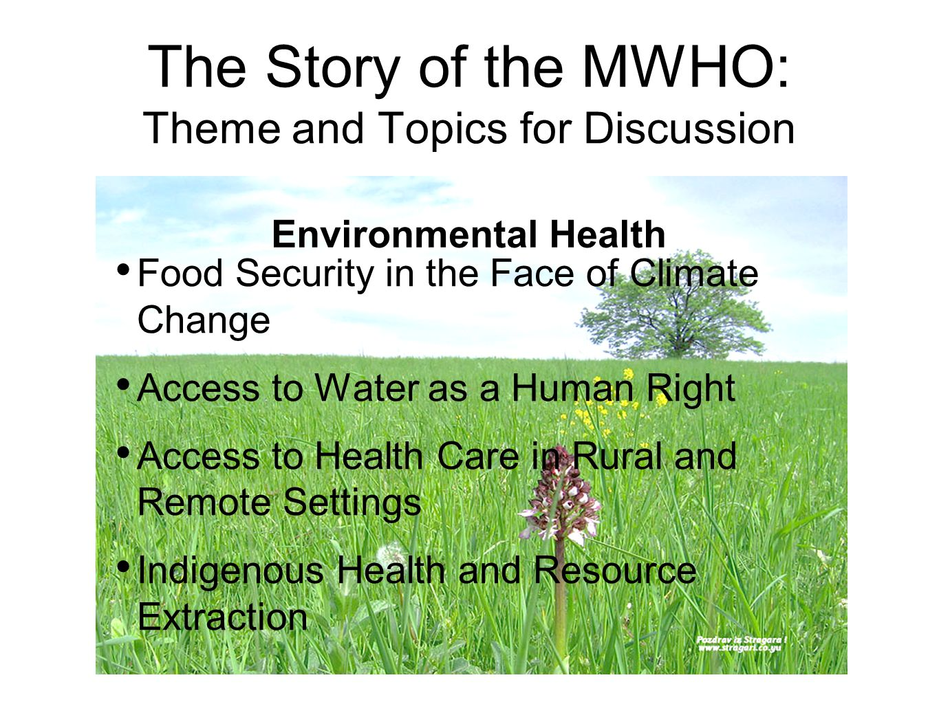The Story of the MWHO: Theme and Topics for Discussion Food Security in the Face of Climate Change Access to Water as a Human Right Access to Health Care in Rural and Remote Settings Indigenous Health and Resource Extraction Environmental Health