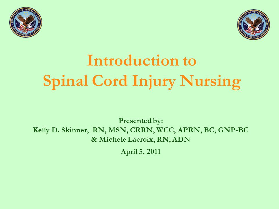 Introduction to Spinal Cord Injury Nursing Presented by: Kelly D.