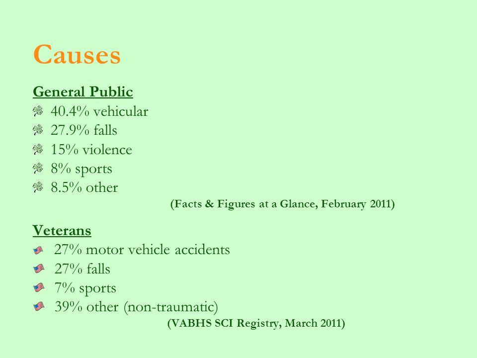 Causes General Public 40.4% vehicular 27.9% falls 15% violence 8% sports 8.5% other (Facts & Figures at a Glance, February 2011) Veterans 27% motor vehicle accidents 27% falls 7% sports 39% other (non-traumatic) (VABHS SCI Registry, March 2011)