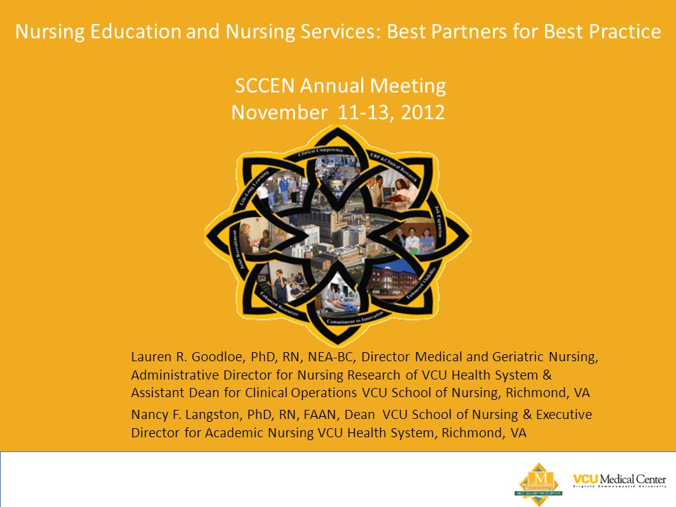 Nursing Education and Nursing Services: Best Partners for Best Practice SCCEN Annual Meeting November 11-13, 2012 Lauren R.
