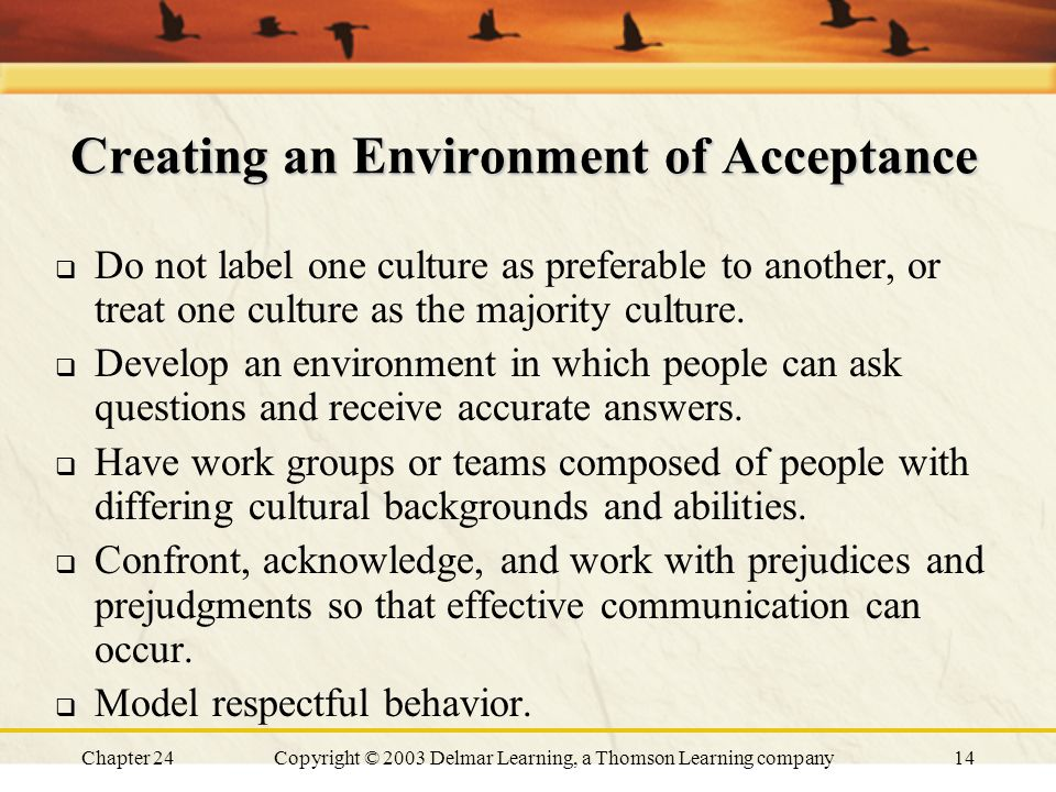 Chapter 24Copyright © 2003 Delmar Learning, a Thomson Learning company14 Creating an Environment of Acceptance  Do not label one culture as preferabl