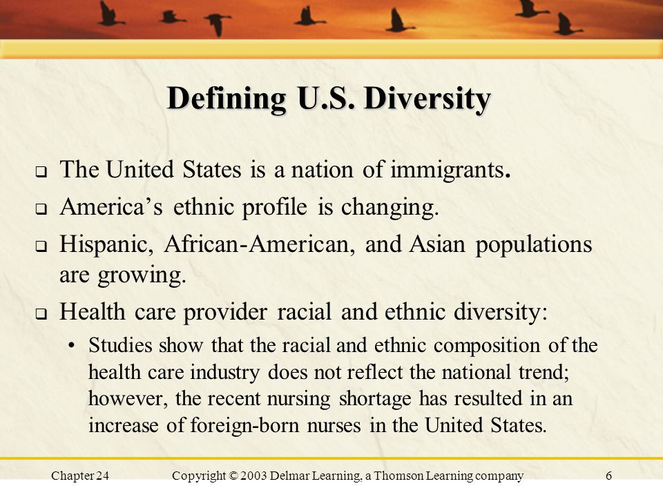 Chapter 24Copyright © 2003 Delmar Learning, a Thomson Learning company6 Defining U.S. Diversity  The United States is a nation of immigrants.  Ameri
