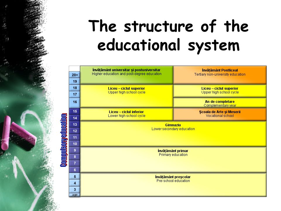 The structure of the educational system