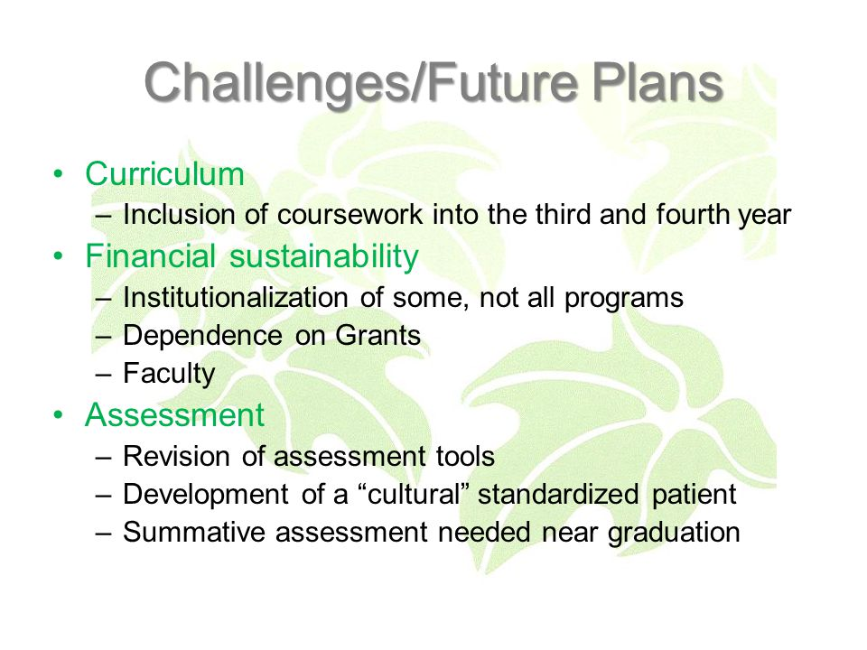 Challenges/Future Plans Curriculum –Inclusion of coursework into the third and fourth year Financial sustainability –Institutionalization of some, not all programs –Dependence on Grants –Faculty Assessment –Revision of assessment tools –Development of a cultural standardized patient –Summative assessment needed near graduation