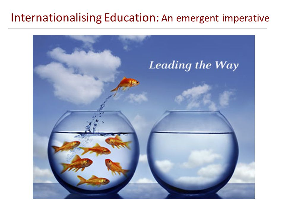 Internationalising Education: An emergent imperative
