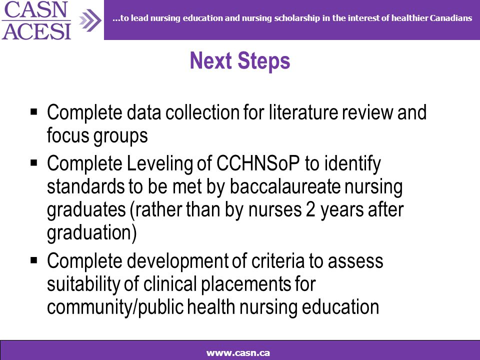 …to lead nursing education and nursing scholarship in the interest of healthier Canadians www.casn.ca Next Steps  Complete data collection for litera