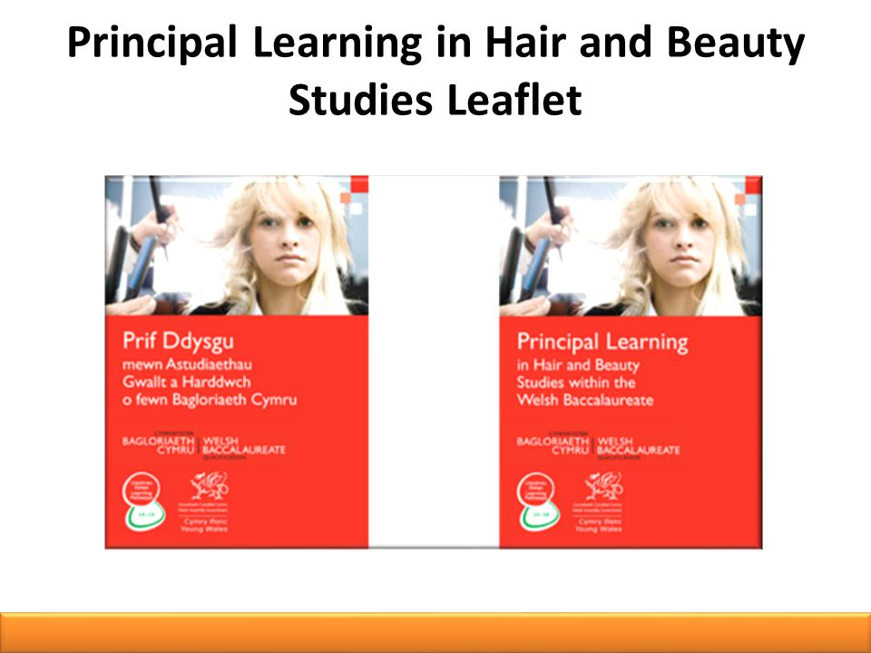 Principal Learning in Hair and Beauty Studies Leaflet