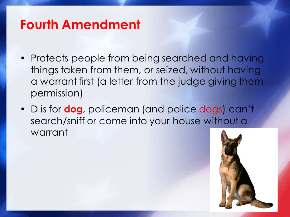Protects people from being searched and having things taken from them, or seized, without having a warrant first (a letter from the judge giving them permission) D is for dog, policeman (and police dogs) can't search/sniff or come into your house without a warrant Fourth Amendment