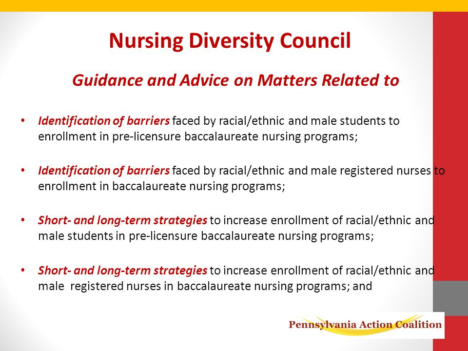 Nursing Diversity Council Guidance and Advice on Matters Related to Identification of barriers faced by racial/ethnic and male students to enrollment in pre-licensure baccalaureate nursing programs; Identification of barriers faced by racial/ethnic and male registered nurses to enrollment in baccalaureate nursing programs; Short- and long-term strategies to increase enrollment of racial/ethnic and male students in pre-licensure baccalaureate nursing programs; Short- and long-term strategies to increase enrollment of racial/ethnic and male registered nurses in baccalaureate nursing programs; and