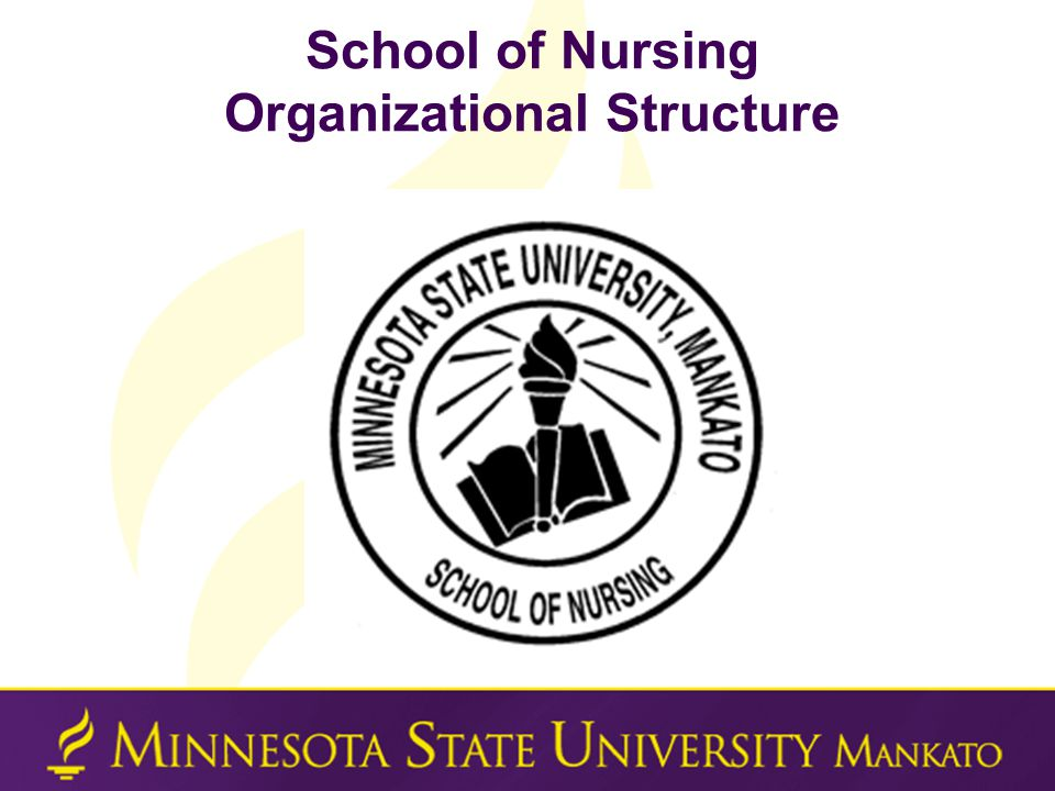 General Education  Transfer students with completed MnTC or AA Degree have fulfilled all General Education requirements at MSU  Transfer students with a completed BA/BS Degree have fulfilled all General Education requirements at MSU