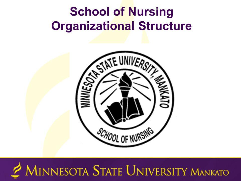 RN Baccalaureate Completion Program  Part of the larger School of Nursing (SON) at Minnesota State University, Mankato  BS Completion Program Webpage (http://ahn.mnsu.edu/nursing/undergraduate/completi on/)Program Webpagehttp://ahn.mnsu.edu/nursing/undergraduate/completi on/ <Program information <Student handbook <Forms <Policies