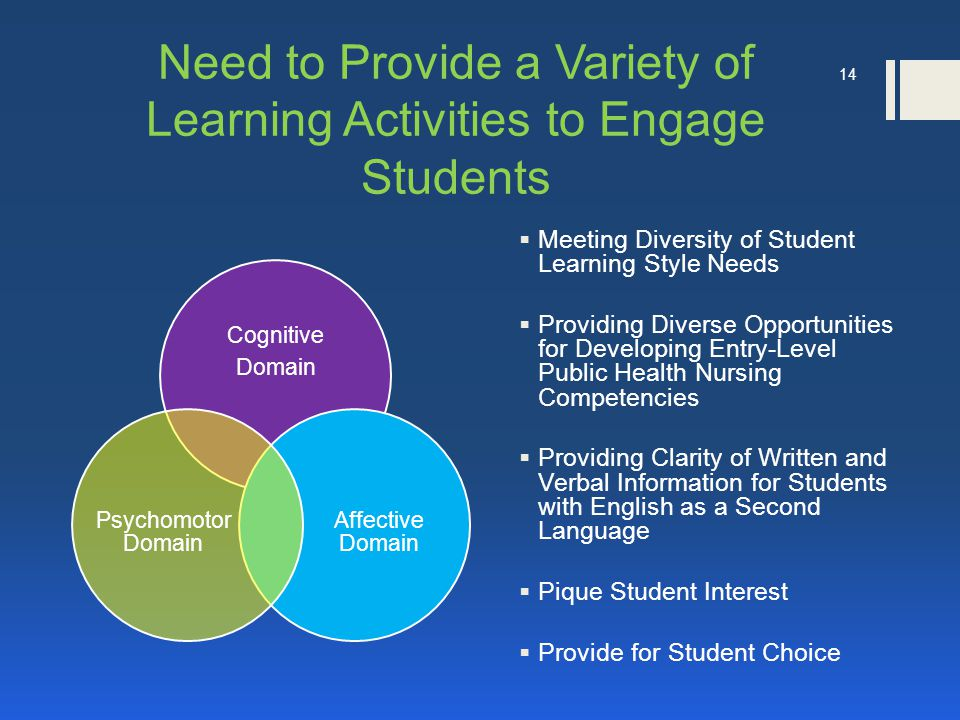 14 Need to Provide a Variety of Learning Activities to Engage Students Cognitive Domain Affective Domain Psychomotor Domain  Meeting Diversity of Student Learning Style Needs  Providing Diverse Opportunities for Developing Entry-Level Public Health Nursing Competencies  Providing Clarity of Written and Verbal Information for Students with English as a Second Language  Pique Student Interest  Provide for Student Choice