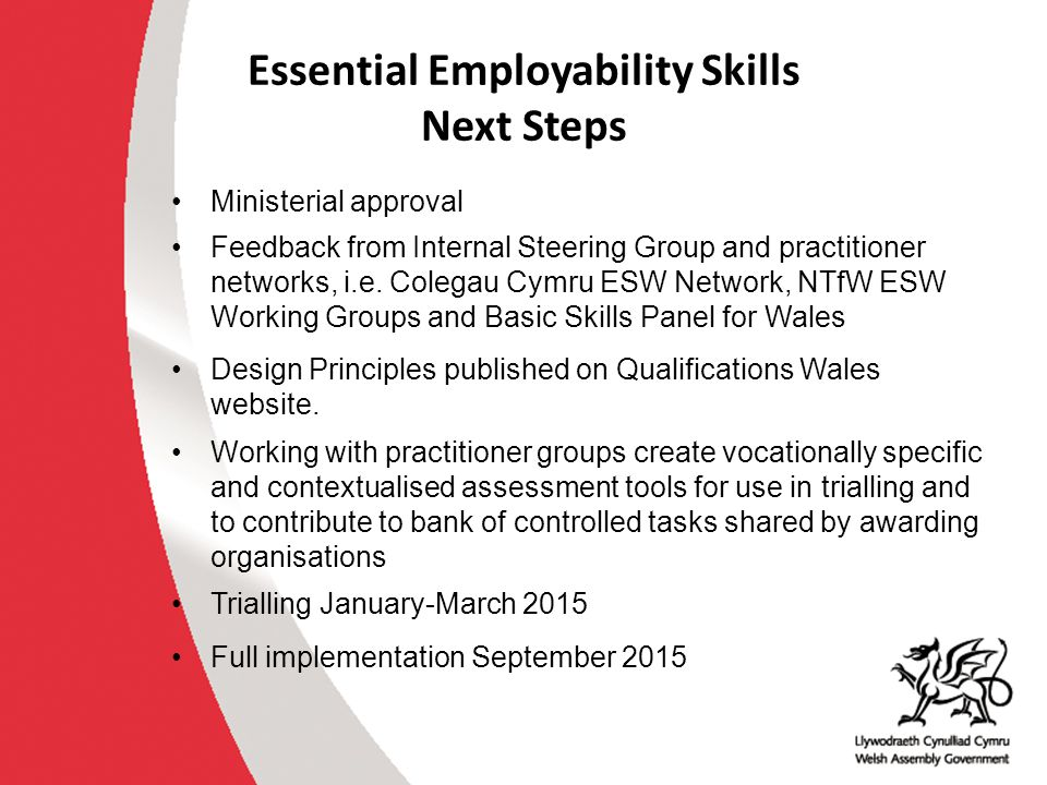 Essential Employability Skills Next Steps Ministerial approval Feedback from Internal Steering Group and practitioner networks, i.e. Colegau Cymru ESW