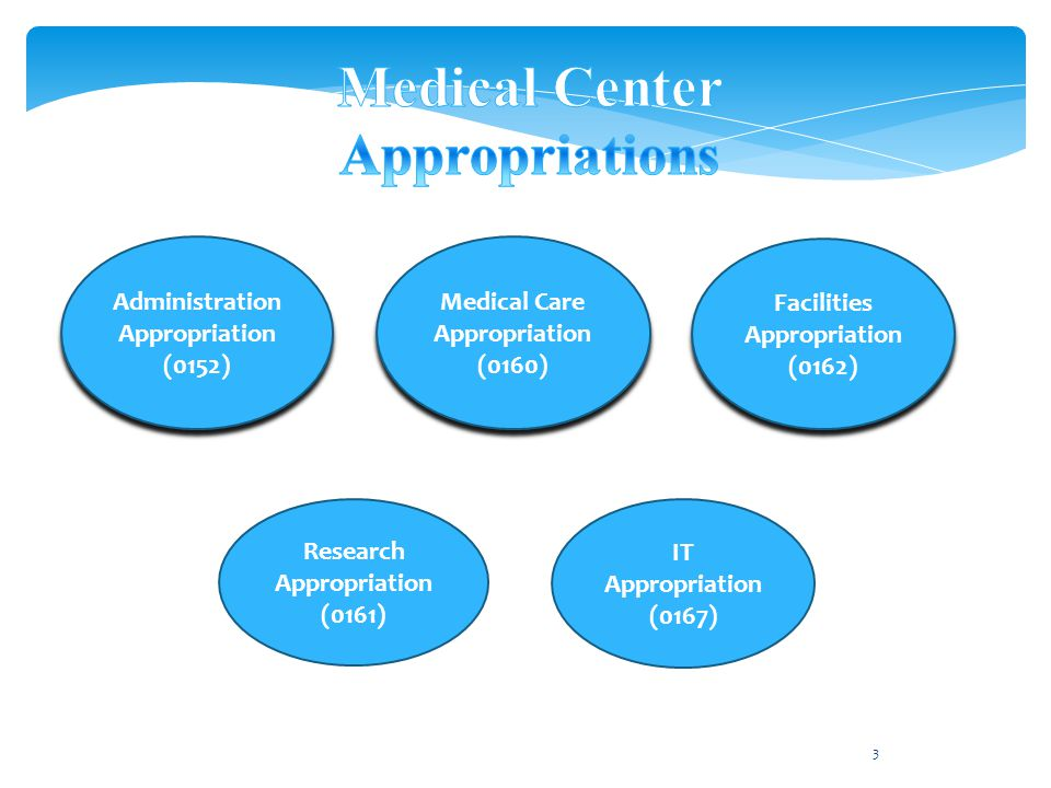 3 Medical Care Appropriation (0160) Medical Care Appropriation (0160) Administration Appropriation (0152) Administration Appropriation (0152) Facilities Appropriation (0162) Facilities Appropriation (0162) IT Appropriation (0167) Research Appropriation (0161)