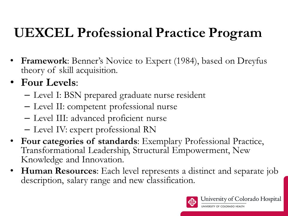 Clinical Nurse Practice Roles LEVEL I – Entry level Advanced Beginner: graduated from an accredited baccalaureate or Masters entry into practice program.