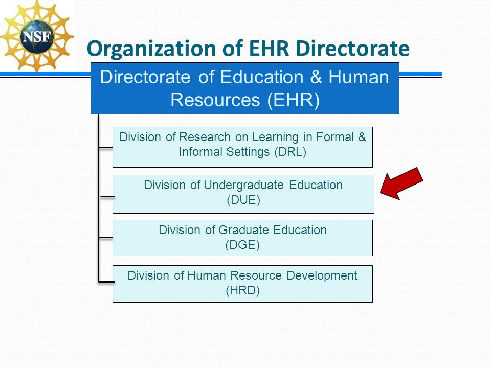 Organization of EHR Directorate Directorate of Education & Human Resources (EHR) Division of Graduate Education (DGE) Division of Undergraduate Educat