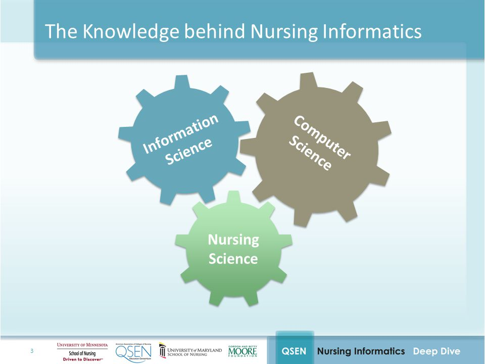 24 Integrating Informatics Competencies into Nursing Education 1.Integrate theories and concepts from liberal education into nursing practice.