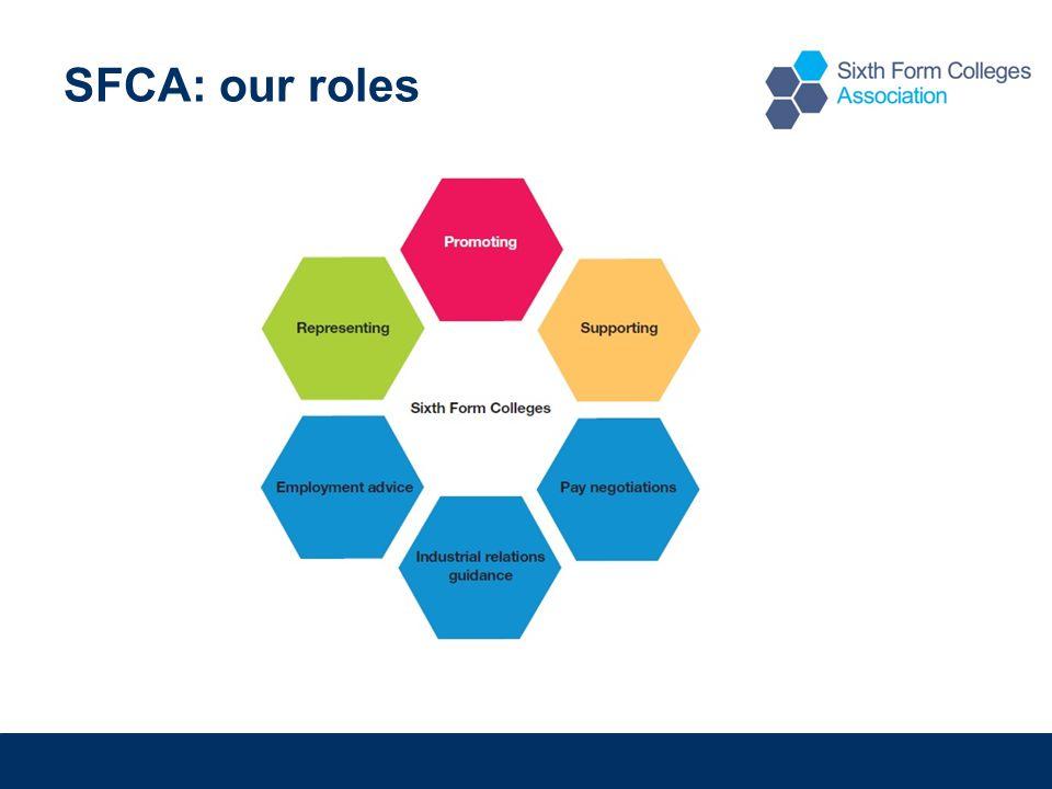 SFCA: our roles