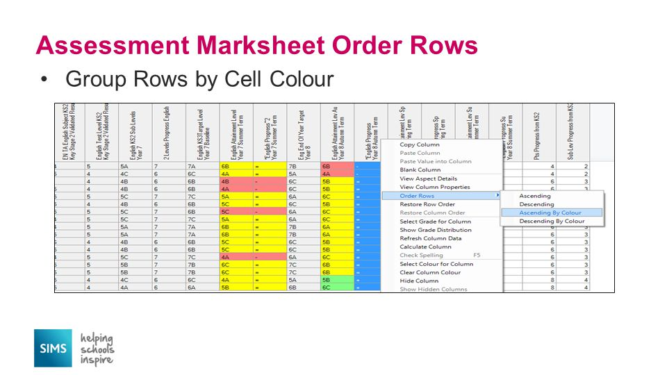 Group Rows by Cell Colour Assessment Marksheet Order Rows
