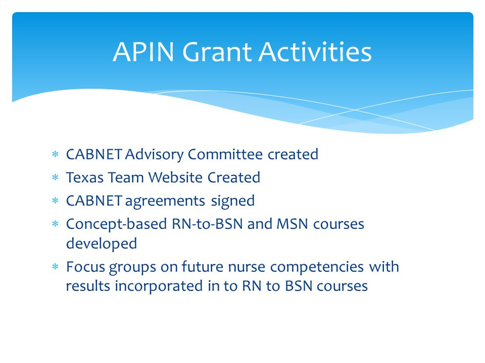  CABNET Advisory Committee created  Texas Team Website Created  CABNET agreements signed  Concept-based RN-to-BSN and MSN courses developed  Focus groups on future nurse competencies with results incorporated in to RN to BSN courses APIN Grant Activities