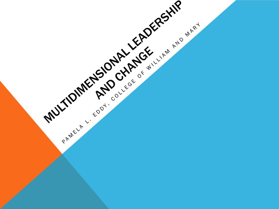 MULTIDIMENSIONAL LEADERSHIP Gender FemaleMale Communication Top Down Participatory Sensemaking & Framing Step-by-Step Visionary Connective Competencies Minding the Bottom Line InclusivityFraming Meaning Systems Thinking Leader A Leader B Leader C Leadership Schema
