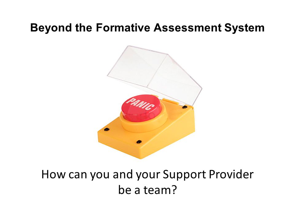 Beyond the Formative Assessment System How can you and your Support Provider be a team?
