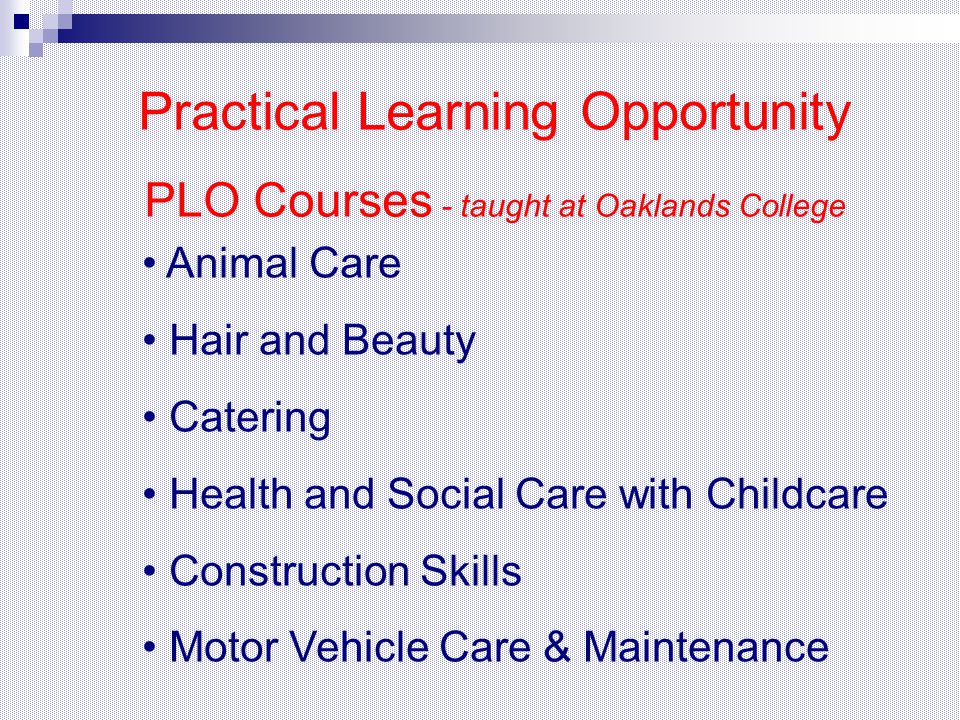 Animal Care Hair and Beauty Catering Health and Social Care with Childcare Construction Skills Motor Vehicle Care & Maintenance Practical Learning Opp