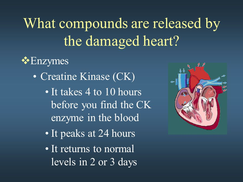 What compounds are released by the damaged heart?  Enzymes Creatine Kinase (CK) It takes 4 to 10 hours before you find the CK enzyme in the blood It