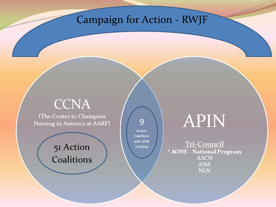 APIN Tri-Council * AONE - National Program AACN ANA NLN 51 Action Coalitions 9 Action Coalitions with APIN Funding Campaign for Action - RWJF CCNA (The Center to Champion Nursing in America at AARP)