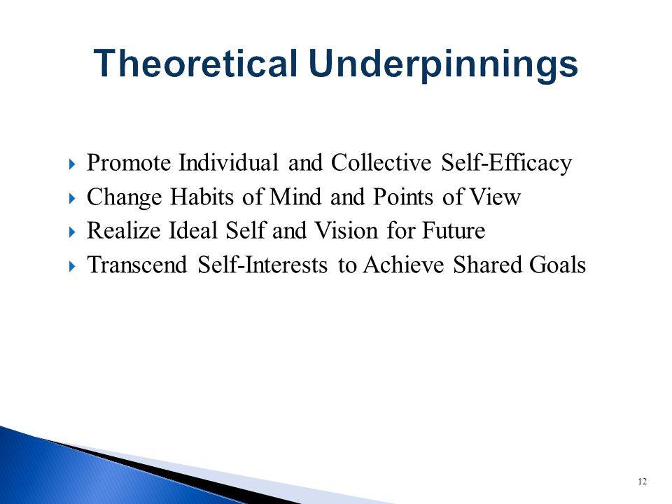  Promote Individual and Collective Self-Efficacy  Change Habits of Mind and Points of View  Realize Ideal Self and Vision for Future  Transcend Self-Interests to Achieve Shared Goals 12