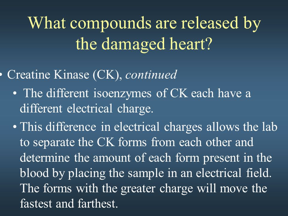 What compounds are released by the damaged heart.