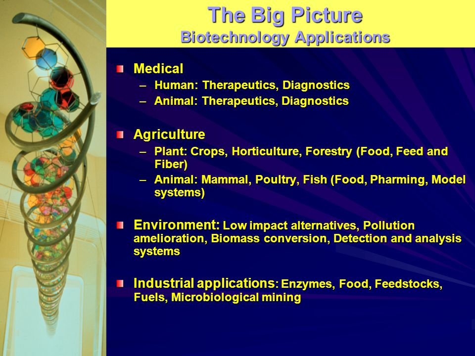 Future: Good Regulatory Practice Current course topics adapted from masters level to the undergraduate classroom –Drug discovery and development –Clinical research, marketing and ethics –Clinical studies –Food and drug law –Good manufacturing, good laboratory and good clinical practices Develop case studies to integrate biologics into the regulatory course and facilitate connection with laboratory modules from the biotechnology core curriculum