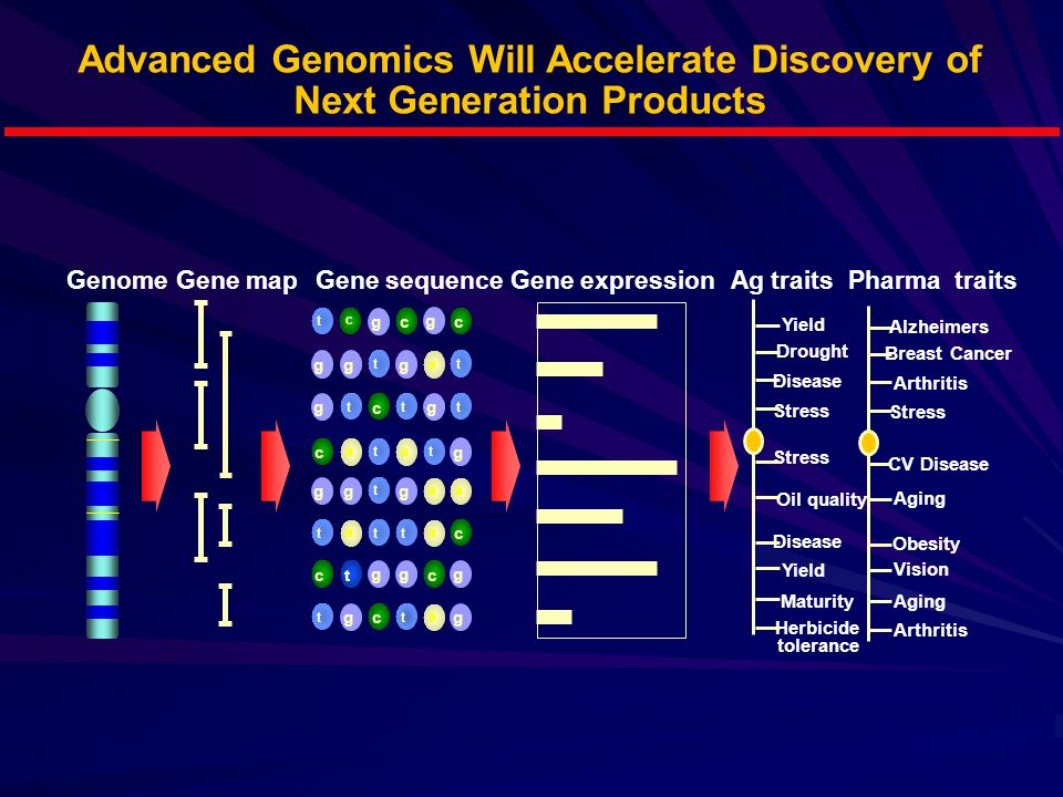 Advanced Genomics Will Accelerate Discovery of Next Generation Products GenomeGene mapGene sequenceGene expressionAg traits Yield Drought Disease Stress Oil quality Maturity Stress Disease Yield Herbicide tolerance t a g c t a g c g c t c g c t g t c g t g g t c t g a t g a t g t t g t g t a a a a c g g c Alzheimers Breast Cancer Arthritis Stress Aging CV Disease Obesity Vision Arthritis Pharma traits t g