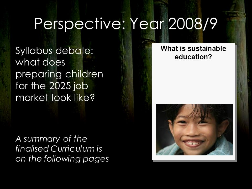 Perspective: Year 2008/9 Syllabus debate: what does preparing children for the 2025 job market look like? A summary of the finalised Curriculum is on