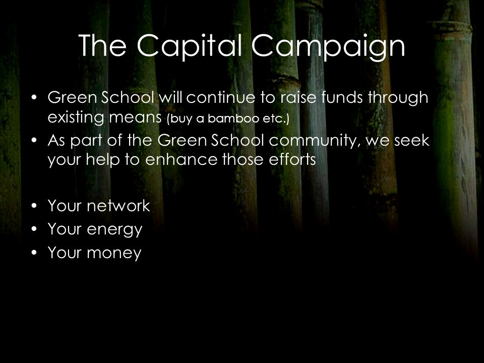 The Capital Campaign Green School will continue to raise funds through existing means (buy a bamboo etc.) As part of the Green School community, we se
