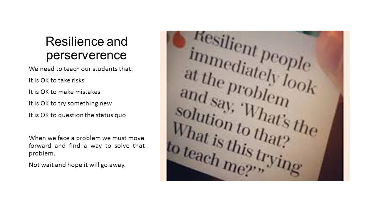 Resilience and perserverence We need to teach our students that: It is OK to take risks It is OK to make mistakes It is OK to try something new It is OK to question the status quo When we face a problem we must move forward and find a way to solve that problem.