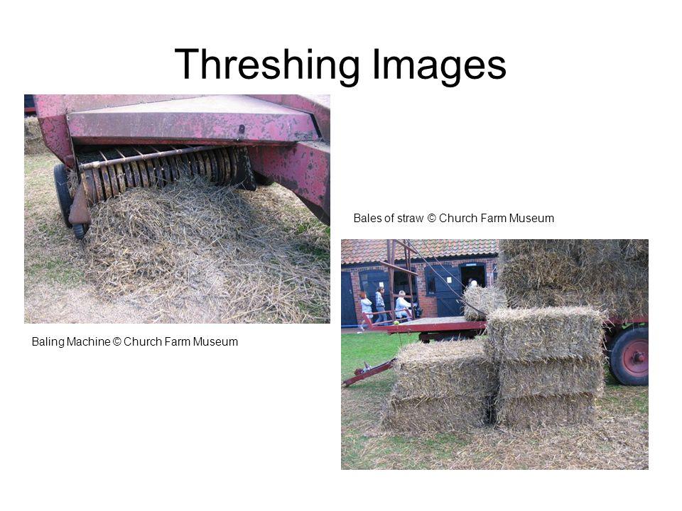 Threshing Images Bales of straw © Church Farm Museum Baling Machine © Church Farm Museum
