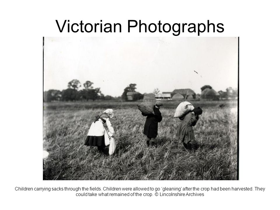 Victorian Photographs Children carrying sacks through the fields.