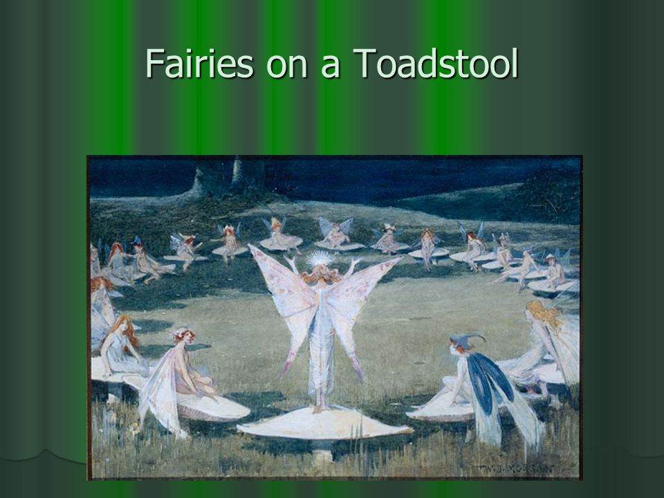 Fairies on a Toadstool