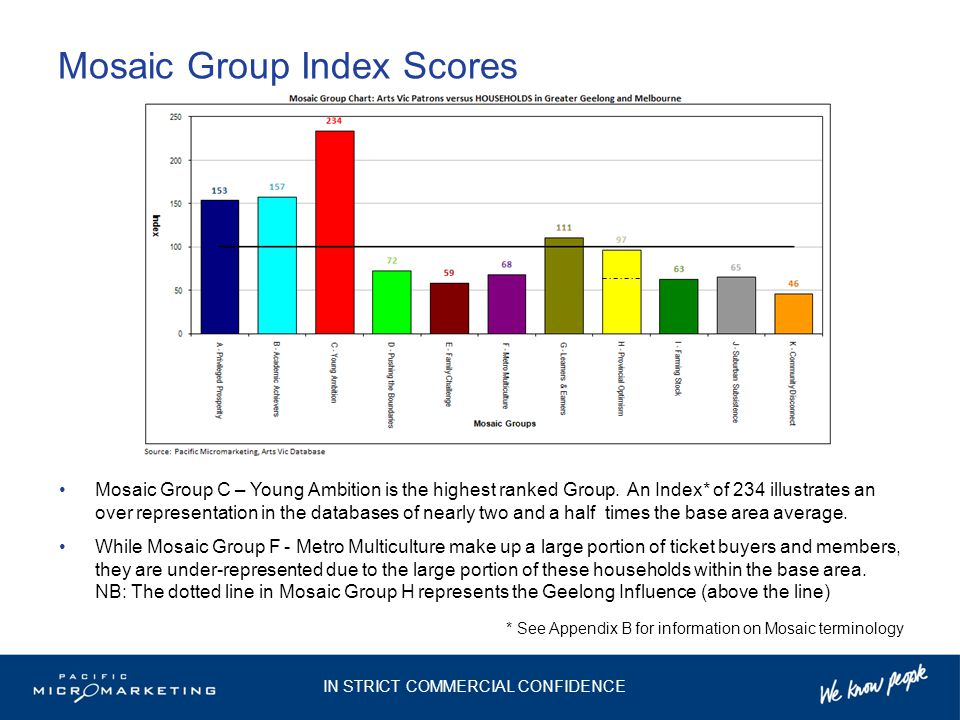Mosaic Group Index Scores Mosaic Group C – Young Ambition is the highest ranked Group.