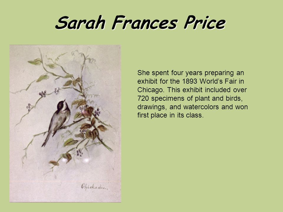 Sarah Frances Price She spent four years preparing an exhibit for the 1893 World's Fair in Chicago.